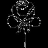 Rose © iStock/prezent