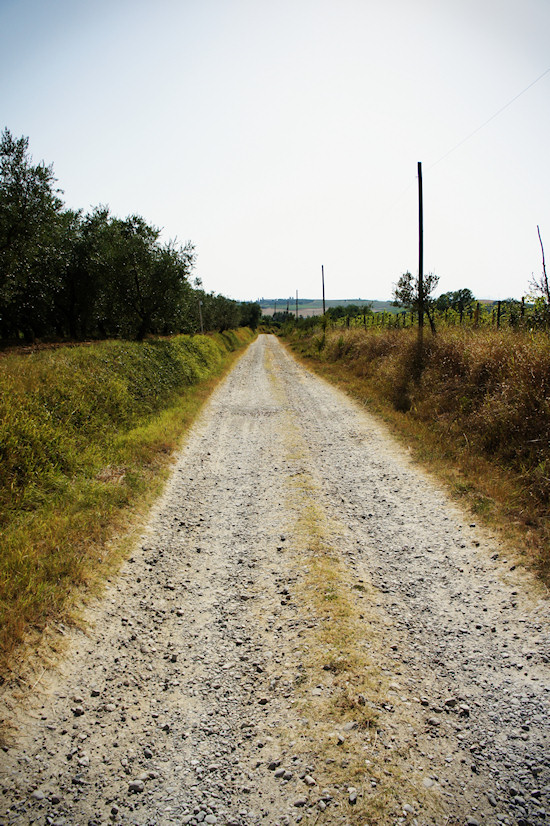 Bumpy road in the countryside
