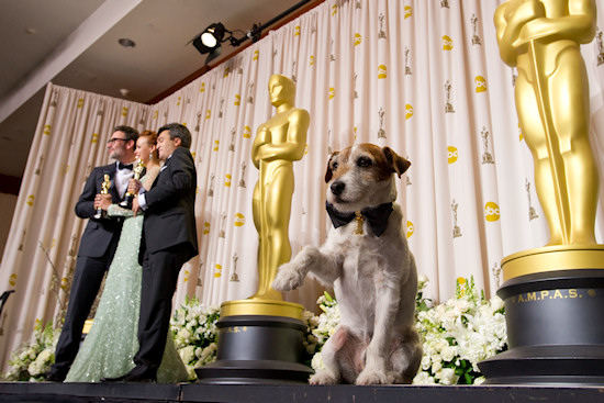 Oscars 2012: Uggie, The Dog