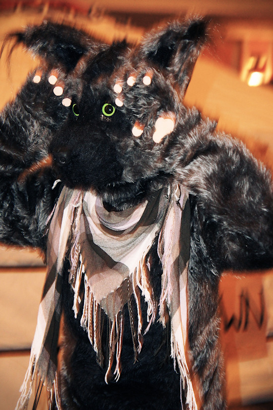 RingCon 2012 Fantasy Outfits: Bear Costume