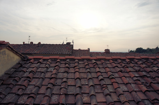 The Roofs of Vinci