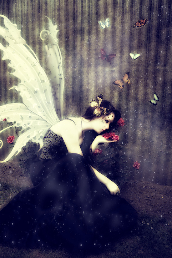 Ancalime Butterfly Gothic Fantasy Photo: Model Simona