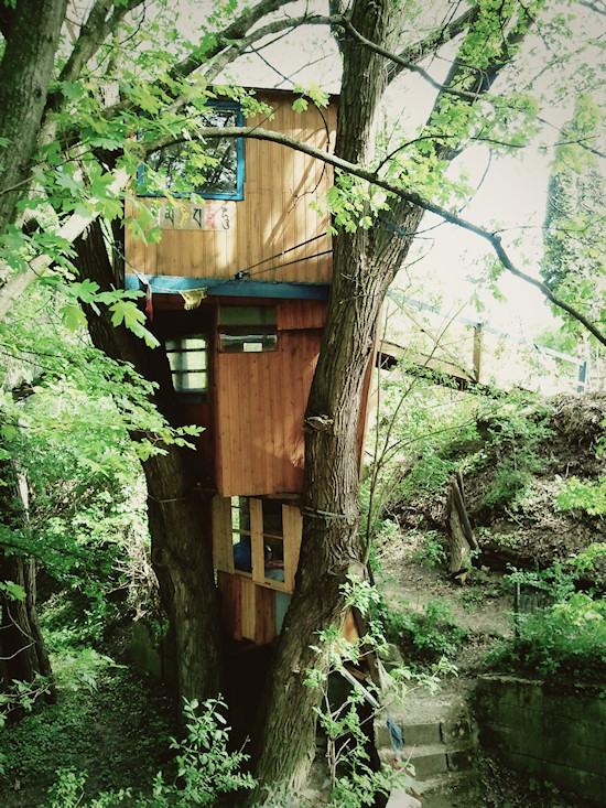 Tree House @ Secret Garden Kahlenberg Wien