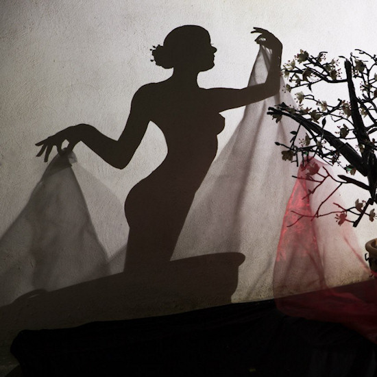 Shadow Art by Teodosio Sectio Aurea: Akina, feminine beauty