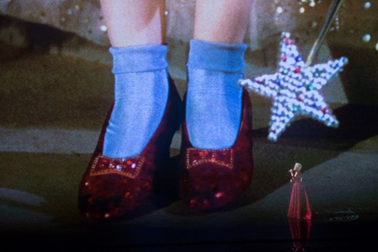 The Red Rubby Slippers: Wizard of Oz tribute Over the Rainbow performed by Pink @ Oscars 2014