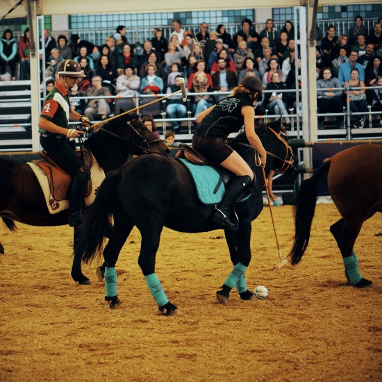 Polo competition @ Apropos Pferd Horse Fair Arena Nova