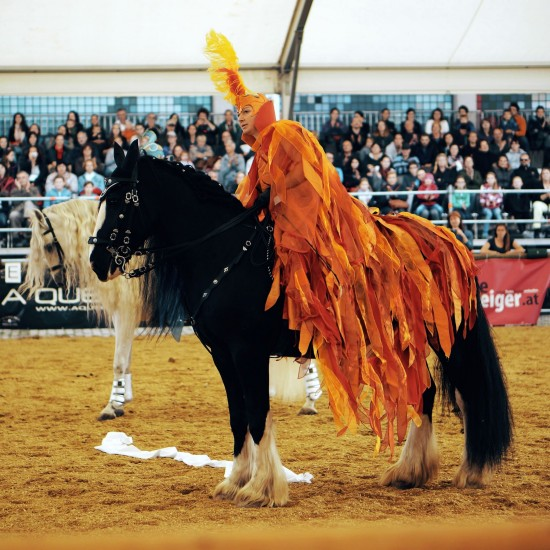 "Show ""Kampf der Elemente"" (Battle of the elements) by Martina Wütherich @ Apropos Pferd Horse Fair Arena Nova"