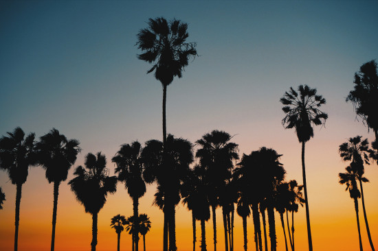 Sunset in Los Angeles, Venice Beach